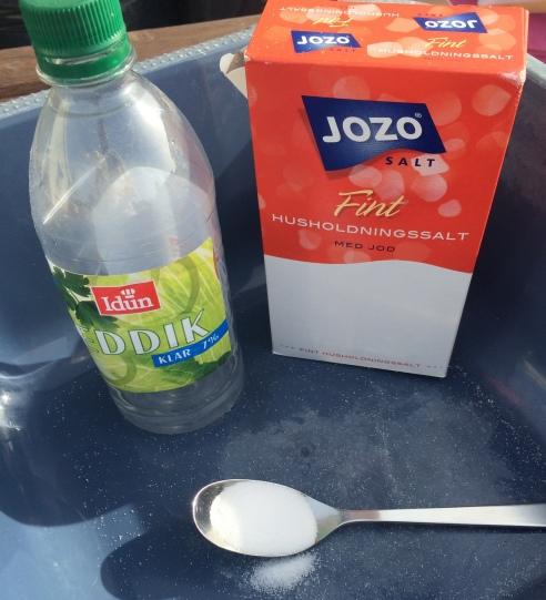 Vinegar, salt, spoon and tub